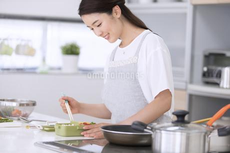 お弁当を作る女性の写真素材 [FYI02969351]