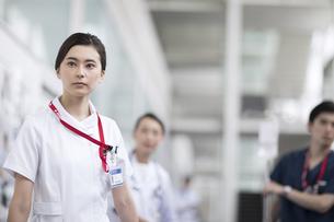 ストレッチャーを運ぶ医師と看護師の写真素材 [FYI02969392]