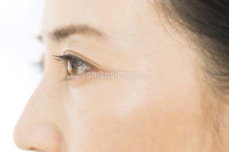 女性の目元の写真素材 [FYI02969434]