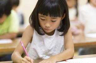 塾の合宿で授業を受ける女の子の写真素材 [FYI02969445]
