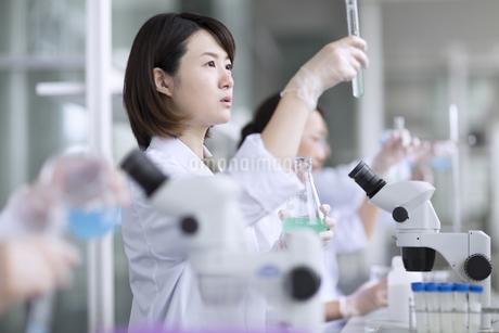 試験管を使って研究をしている女性研究員の写真素材 [FYI02969447]