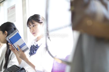 電車で勉強をする女子高校生の写真素材 [FYI02969651]