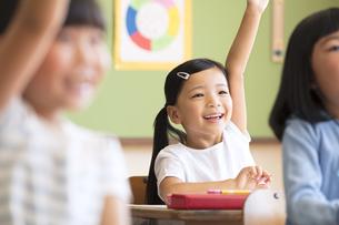 授業中に手を上げる小学生の女の子の写真素材 [FYI02969677]