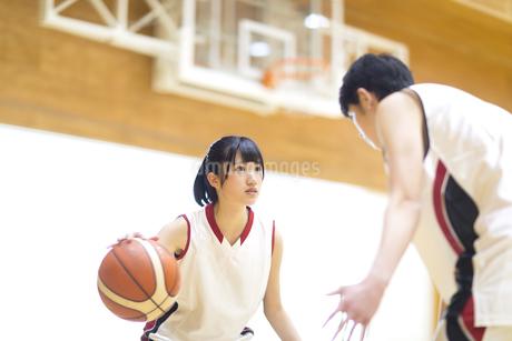 バスケットボールをする女子学生の写真素材 [FYI02969819]