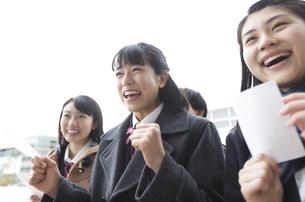 受験番号票を手に番号を確認している女子高校生たちの写真素材 [FYI02969826]