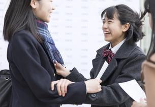 合格を喜びあう女子高校生たちの写真素材 [FYI02969909]
