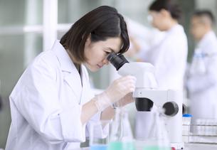 顕微鏡を使って研究をしている女性研究員の写真素材 [FYI02969921]