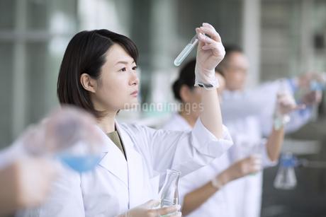 試験管を使って研究をしている女性研究員の写真素材 [FYI02970033]