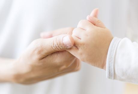 母親の指と赤ちゃんの指の写真素材 [FYI02970073]
