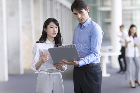 打ち合わせをするビジネス男女の写真素材 [FYI02970077]