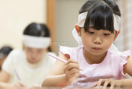 塾の合宿で授業を受ける女の子の写真素材 [FYI02970287]