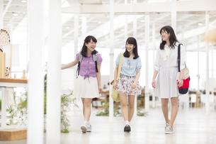 キャンパス内を並んで話しながら歩く女子学生たちの写真素材 [FYI02970880]