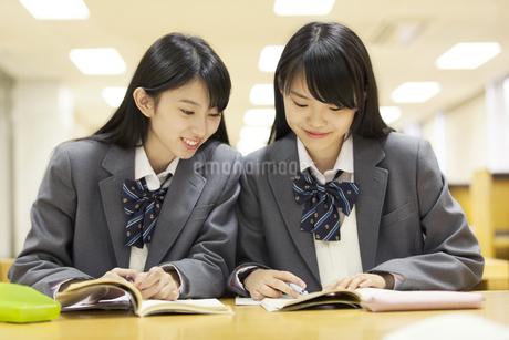 図書室で勉強する2人の女子高校生の写真素材 [FYI02971029]