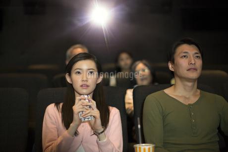 映画館で涙をこぼすカップルの写真素材 [FYI02971082]