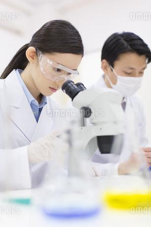 顕微鏡を覗く女性研究員の写真素材 [FYI02971261]