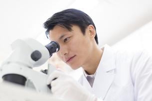 顕微鏡を覗く男性研究員の写真素材 [FYI02971385]