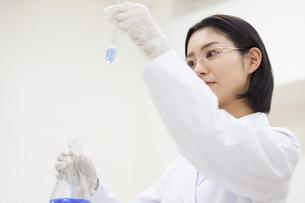 フラスコと試験管を使って研究をしている女性研究員の写真素材 [FYI02971415]
