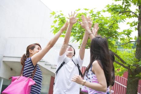 キャンパスでハイタッチする学生の写真素材 [FYI02971439]