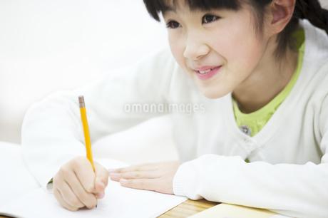 勉強をする女の子の写真素材 [FYI02971454]
