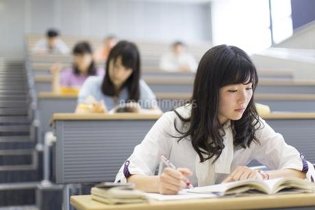 講義でノートをとる女子学生の写真素材 [FYI02971476]