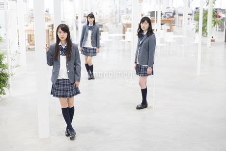 女子高校生たちのポートレートの写真素材 [FYI02971521]