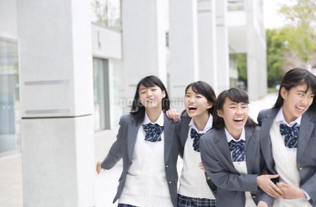 楽しそうに歩く女子高校生たちの写真素材 [FYI02971670]