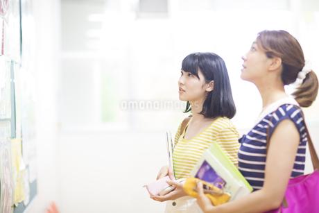 掲示板を見る2人の女子学生の写真素材 [FYI02971779]