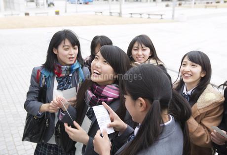 受験番号票を手に番号を確認している女子高校生たちの写真素材 [FYI02971803]