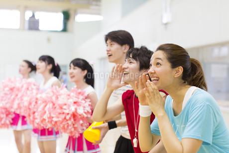 体育館で並んで観戦する学生たちの写真素材 [FYI02971904]