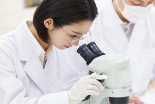 顕微鏡を覗く女性研究員の写真素材 [FYI02971990]