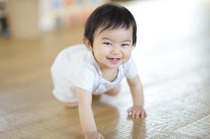 はいはいをして笑う赤ちゃんの写真素材 [FYI02971991]