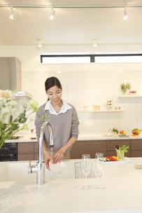 台所で皿を洗う女性の写真素材 [FYI02972157]