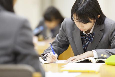 図書室で勉強する女子高校生の写真素材 [FYI02972244]