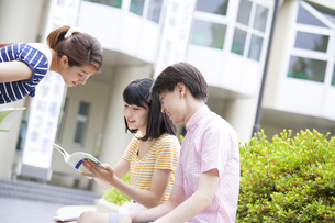 キャンパスで参考書を覗き込む学生たちの写真素材 [FYI02972391]