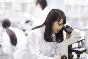 顕微鏡を覗く女子学生の写真素材 [FYI02972479]