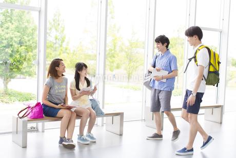 ロビーで談笑する学生たちの写真素材 [FYI02972692]