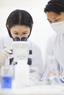 顕微鏡を覗く女性研究員の写真素材 [FYI02972902]