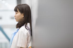 黒板に寄り掛かって立つ女子学生の横顔の写真素材 [FYI02972945]
