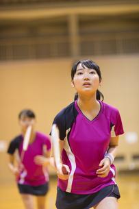 バドミントンをする女子学生の写真素材 [FYI02973076]