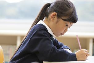 教室で授業を受ける小学生の女の子の写真素材 [FYI02973098]