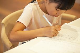 勉強をする女の子の写真素材 [FYI02973114]