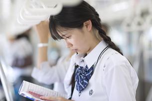 電車で勉強をする女子高校生の写真素材 [FYI02973210]