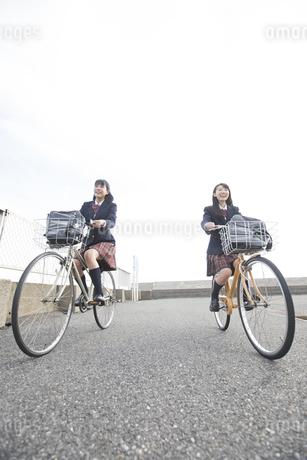 自転車で通学をする女子高校生たちの写真素材 [FYI02973360]