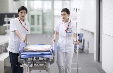 ストレッチャーを運ぶ医師と看護師の写真素材 [FYI02973762]