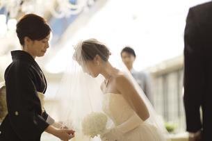 ベールダウンをする母親と新婦の写真素材 [FYI02973946]