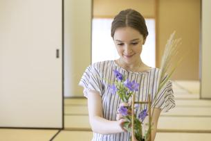 花を生ける外国人観光客の写真素材 [FYI02973985]