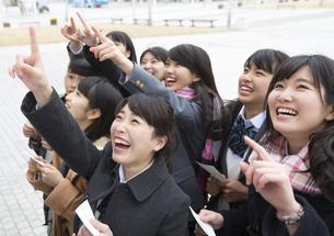 受験番号票を手に番号を確認している女子高校生たちの写真素材 [FYI02974079]