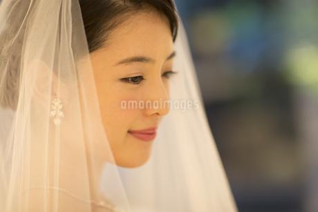 ウェディングドレス姿の新婦の写真素材 [FYI02974102]