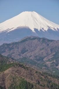 鳥ノ胸山から眺める富士山の写真素材 [FYI02974140]