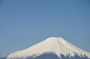鳥ノ胸山から眺める富士山の写真素材 [FYI02974154]